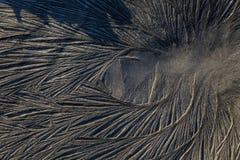 Tierra congelada Imagen de archivo libre de regalías