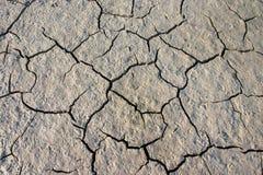 Tierra crannied secada Foto de archivo