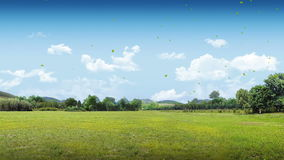 Tierra de colocación del verde de la naturaleza de la película