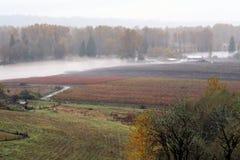Tierra de cultivo inundada Fotos de archivo libres de regalías