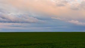 Tierra de cultivo y cielo Imagen de archivo