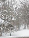 Tierra de la maravilla del invierno Fotos de archivo libres de regalías