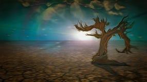 Tierra de la sequía Árbol viejo libre illustration