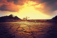 Tierra de la sequía Imagenes de archivo