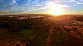 Tierra de pasto de la pradera en la puesta del sol almacen de metraje de vídeo