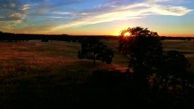 Tierra de pasto de la pradera en la puesta del sol