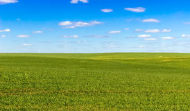 Tierra del cielo y de la hierba, fondo Imagenes de archivo
