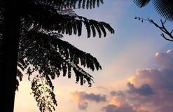 Tierra del frente de la puesta del sol del campo Fotografía de archivo libre de regalías