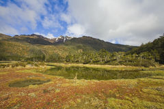 Tierra del fuego Royalty Free Stock Photography