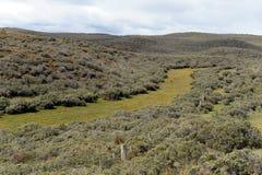 Tierra del Fuego Fotografie Stock Libere da Diritti