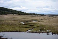 Tierra del Fuego Fotos de archivo