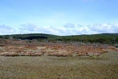 Tierra del Fuego Lizenzfreies Stockbild