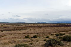 Tierra del Fuego Lizenzfreies Stockfoto