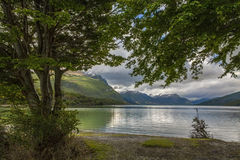 Tierra del Fuego - Argentina Royalty Free Stock Photo