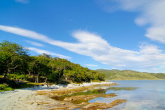 Tierra del Fuego National Park. In Argentina royalty free stock images
