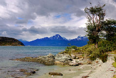 Tierra del Fuego National Park. Is a national park on the Argentine part of the island of Tierra del Fuego in the ecoregion of Patagonic Forest and Altos Andes stock photos