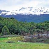 Tierra del Fuego National Park, la Argentina Fotos de archivo libres de regalías