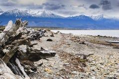 Tierra del fuego, Patagonia, landscape Stock Photography