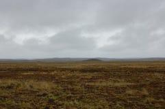 Tierra Del Fuego Tundra Scene fotografia stock libera da diritti