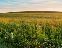 Tierra del prado en la primavera de Hudson Valley NY Fotos de archivo
