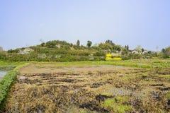 Tierra drenada antes del pueblo de ladera en primavera soleada Imagenes de archivo