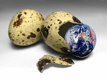 Tierra en huevo Imagen de archivo libre de regalías