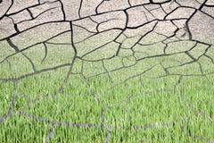 Tierra estéril quemada por el sol: concepto de la desertificación Imagen de archivo