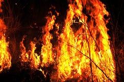 Tierra furiosa delante de ellos toda del fuego de los diversos colores Imagen de archivo