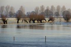 Tierra inundada Foto de archivo libre de regalías