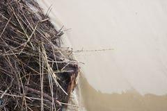 Tierra inundada por la lluvia torrencial Fotos de archivo libres de regalías