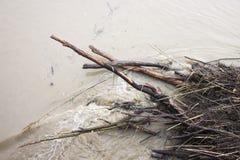 Tierra inundada por la lluvia torrencial Imagen de archivo libre de regalías