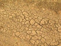 Tierra marrón secada cubierta con las pequeñas grietas Fotografía de archivo