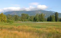 Tierra meridional del rancho del valle de la Columbia Británica imagen de archivo