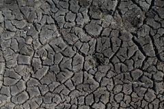 Tierra negra con las grietas grandes para el fondo o la textura imagen de archivo