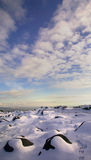 Tierra Nevado Fotografía de archivo