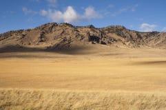 Tierra occidental de la hierba de Estados Unidos Idaho del paisaje hermoso Imágenes de archivo libres de regalías