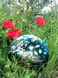 Tierra perdida Imagen de archivo libre de regalías