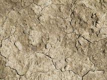 Tierra que se agrieta secada Fotografía de archivo