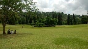 Tierra real del parque Foto de archivo libre de regalías