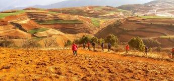Tierra roja en la provincia de Yunnan, China imagen de archivo libre de regalías