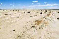 Tierra salada agrietada Fotos de archivo