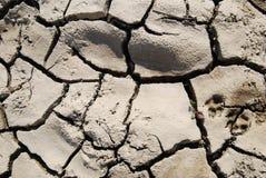 Tierra seca Imágenes de archivo libres de regalías