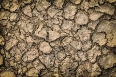 Tierra seca agrietada Imagenes de archivo