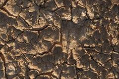 Tierra seca agrietada sin el agua Foto de archivo libre de regalías