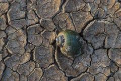 Tierra seca agrietada sin el agua Imagen de archivo