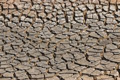 Tierra seca agrietada sin el agua abstraiga el fondo Imágenes de archivo libres de regalías