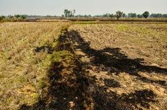 Tierra seca antes de la estación de lluvias Foto de archivo