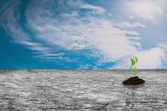 Tierra seca con el crecimiento verde y el cielo de las plantas Imagen de archivo libre de regalías