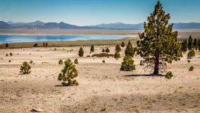 Tierra seca con el lago en fondo Fotos de archivo
