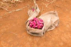 Tierra seca con el manojo de flores fotografía de archivo libre de regalías